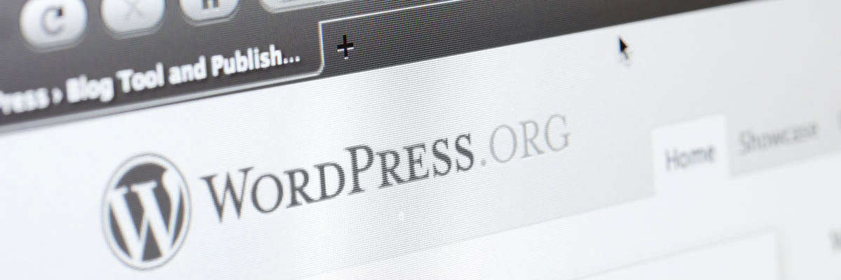 WordPress Maintenance & WordPress Support